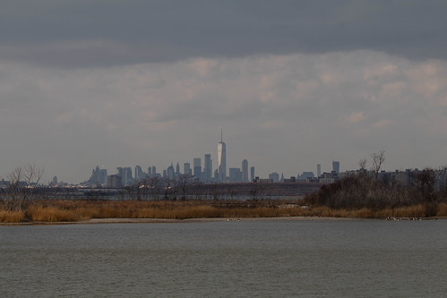 Manhattan Skyline from Jamaica Bay NWR.