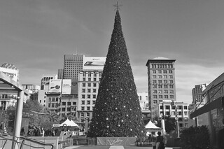 Christmas in SF - Union Square Holiday Tree day bw