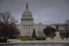 US Capitol Building and 2017 Christmas Tree - Washington DC