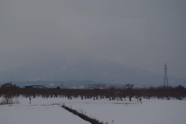 Mt. Iwaki and winter apple farms