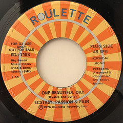 ECSTASY, PASSION & PAIN:ONE BEAUTIFUL DAY(LABEL SIDE-A)