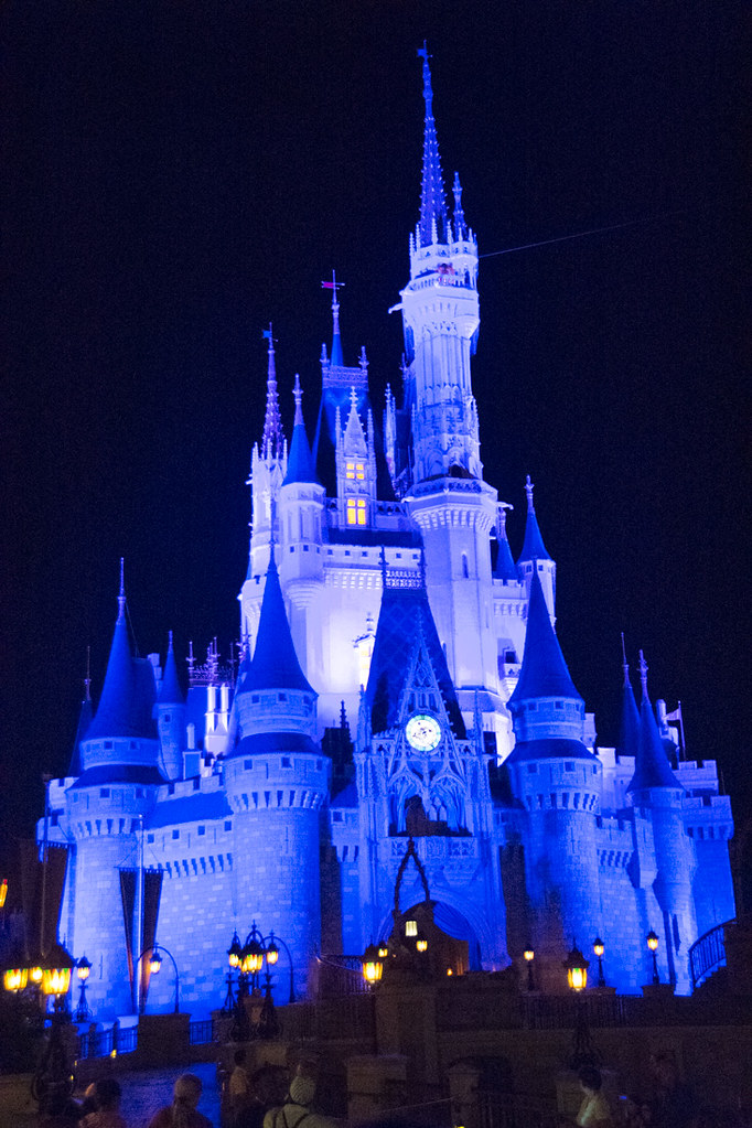 Disney Castle at Night