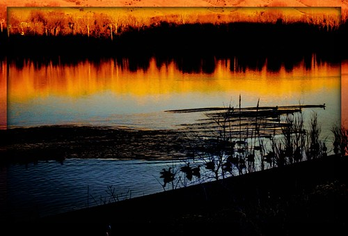 goose geese sonyrx100m5 lightroom ipiccyframes ipiccy sunrise dawn impressionism slider slidersunday hss happyslidersunday