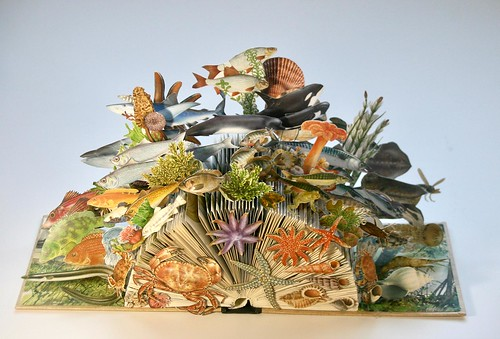 Water Life of Britain by Barbara Pearman - Altered Books