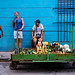 Selling Vegetables & Fruits