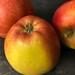 1017 Apples