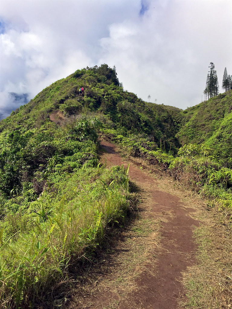 Waihe'e Ridge Trail on Maui