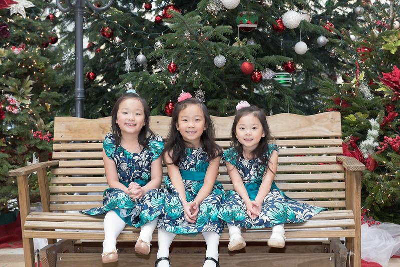 Christmas Tree 앞에서 2