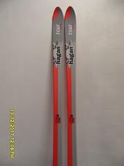 ski alpové lyže Hagan Tour 163 cm - titulní fotka