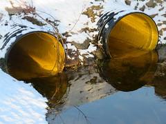 Kõrge veetase Maardu järves