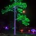 big tree with Christmas lights and supermoon