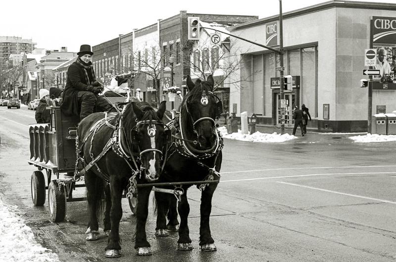 Annual Horse Ride