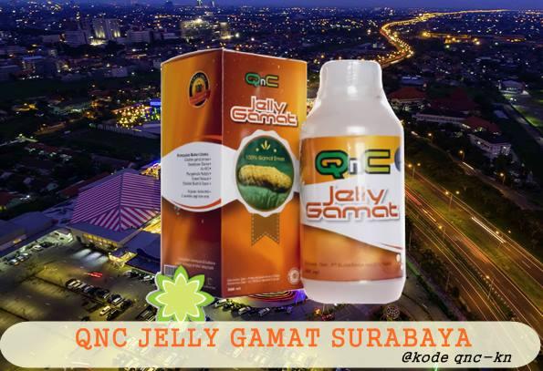 Apakah Qnc Jelly Gamat Ada Di Surabaya