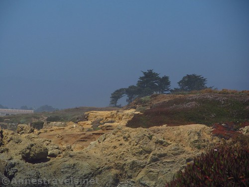 Misty views from the trail north from Glass Beach, California
