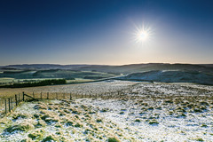 Cheviot Hills by Alwinton