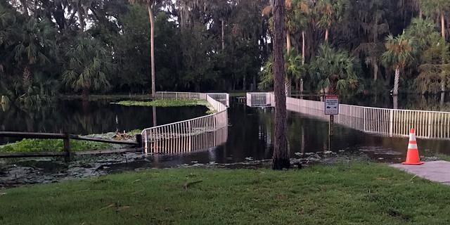 Gemini Springs flooding