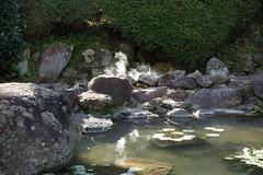 "Beppu ""Hells"" Hot Springs (Oita, Japan)"