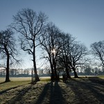 Moor Park silhouette