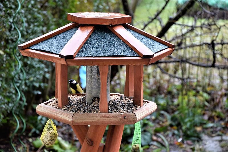 Birdhouse 16.12 (6)