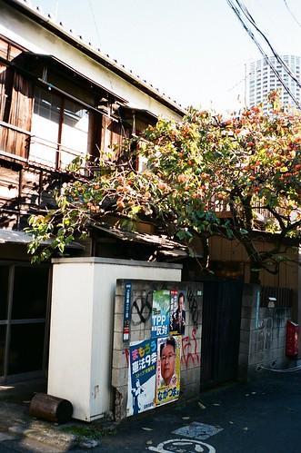 Tokyo 135-24