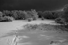 Colle d'Orlando in inverno