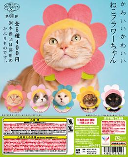 貓比花嬌?!奇譚俱樂部【可愛貓咪頭套。花朵貓】貓星人專屬轉蛋 第15彈!! かわいい かわいい ねこフラワーちゃん