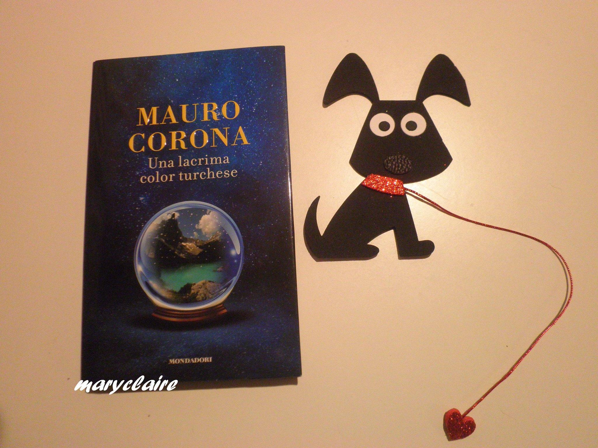 libro + segnalibro