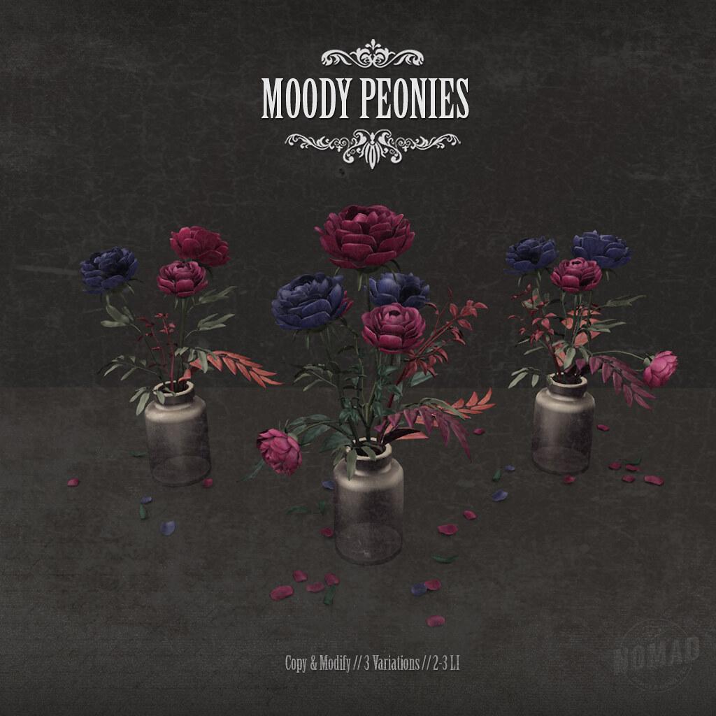 NOMAD // MOODY PEONIES - TeleportHub.com Live!