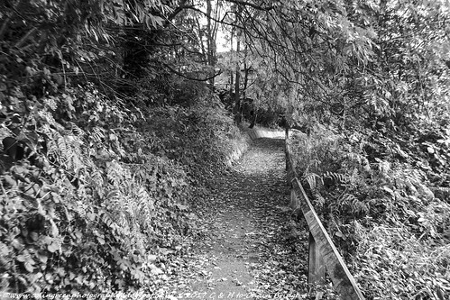 Calder & Hebble Path. Sowerby Bridge.