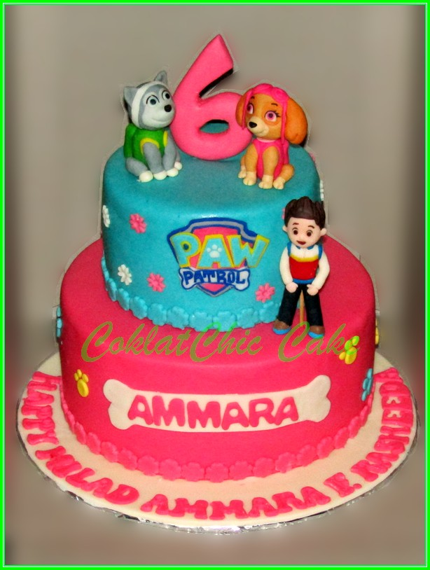 Cake Paw Patrol AMMARA 18cm +12cm