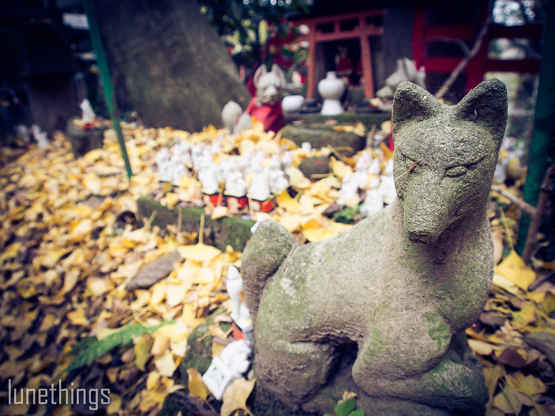 Japan 2017 Day 3 (31 of 58)