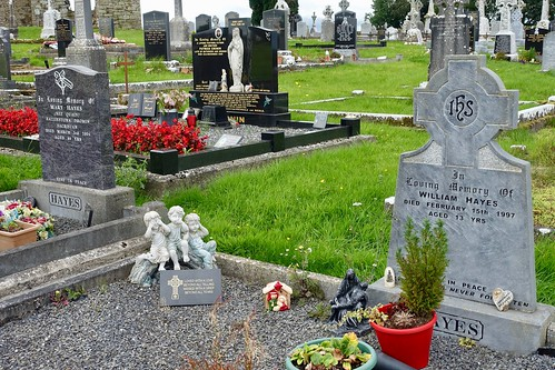 Dromin, Co. Limerick