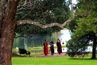 botanical garden monks