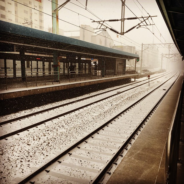 Tracks in between train platforms. Snow is falling and covers tracks.