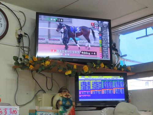 金沢競馬場の食堂でJRAのパドックを見る