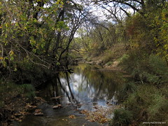 all quiet at the creek