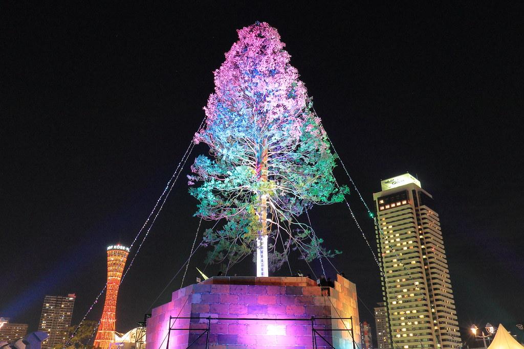 Christmas Tree001