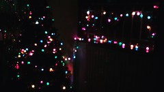 christmas lights I