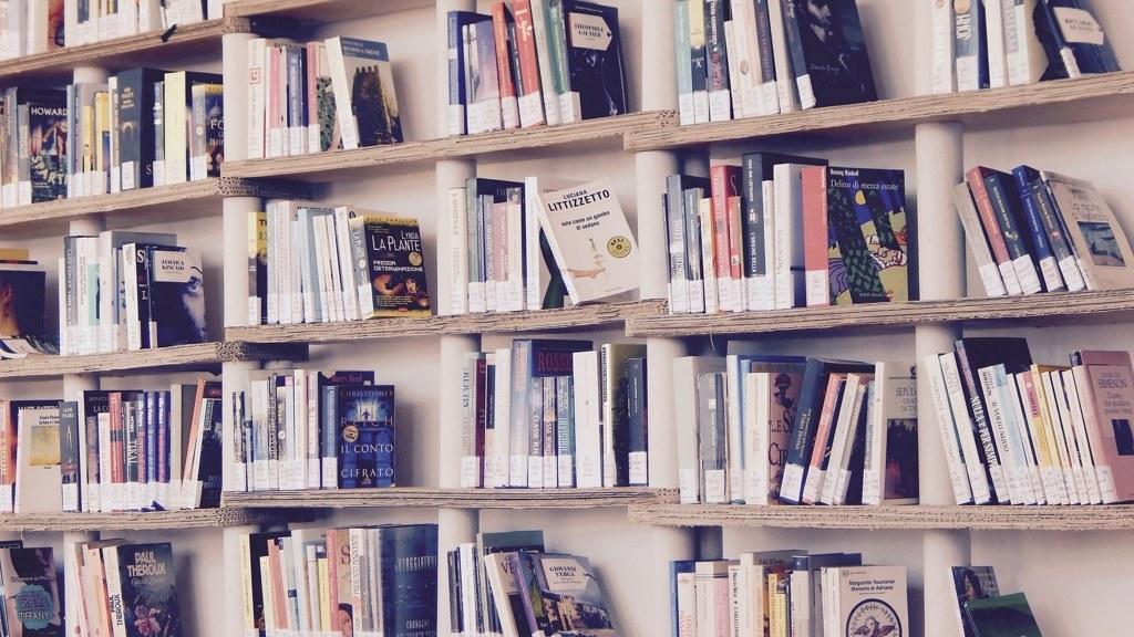 koreanpersonality-borrowingbooks