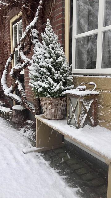 Bankje zijgevel kerstboompje in mand