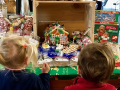 The twins are pretty impressed with a gingerbread house at the market