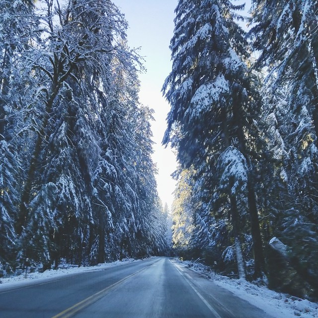 Winter wonderland on Vancouver Island!