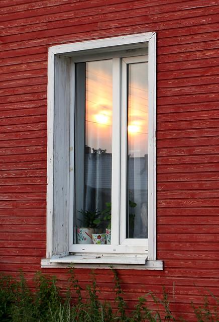 Окно с солнечными глазами