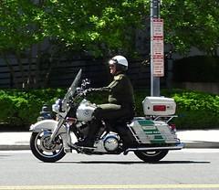 US Border Patrol - 2009 Harley Davidson Motorcycle (3)