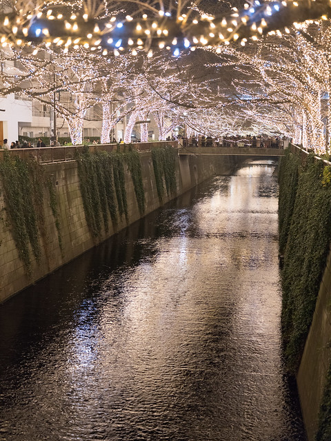Photo:GFX01724 By Zengame
