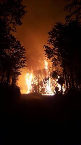 CAUQUENES; CONAF cifra en 200 las Hectáreas consumidas por las llamas