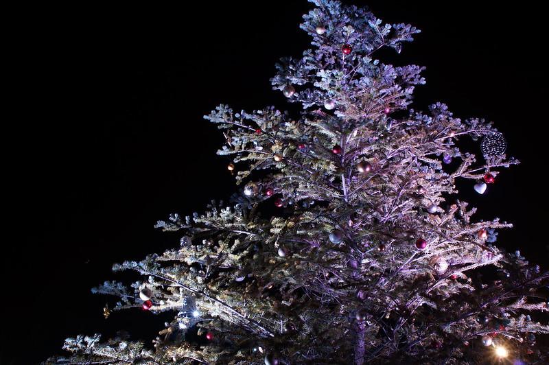 クリスマスツリー_201712_NO2
