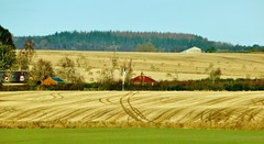 Farmland near Monymusk
