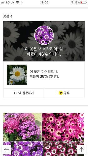 koreanapps-flowersearch19