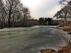 Frozen lake in Prospect Park